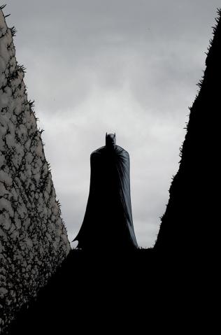 batman-inc-9-burnham