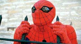 spiderman fence 2