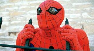 spiderman fence 2